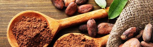 2: Cacao & RAW Chocolate